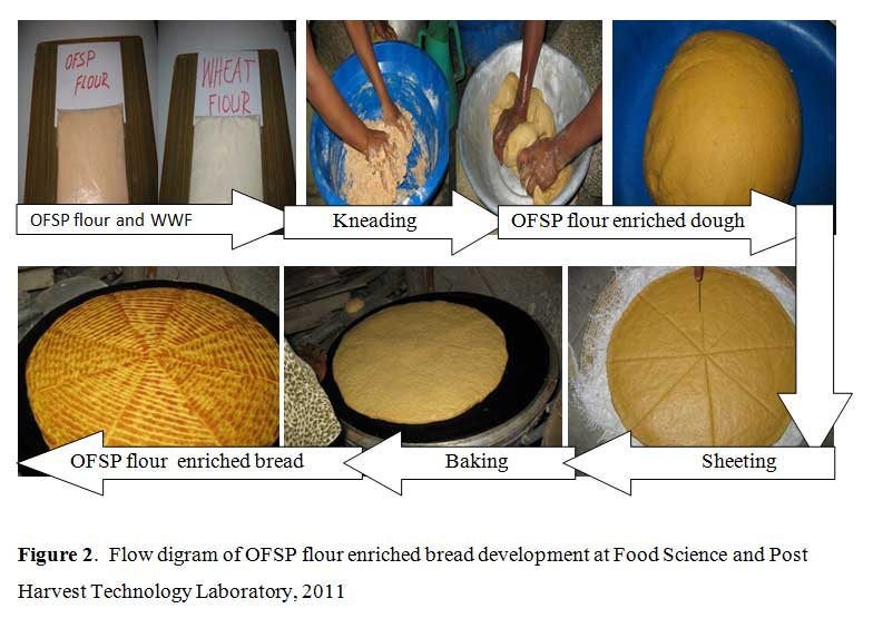 The Chemistry of Bread Making