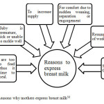 Figure 2.1: Reasons why mothers express breast milk30