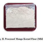 Fig. II. Processed Mango Kernel Flour (MKF)