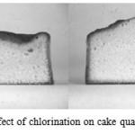 Optimum Nutrition Cake Batter Vs Birthday Cake