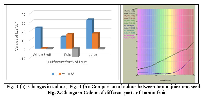 Physicochemical and Nutritional Characterization of Jamun