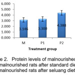 Protein levels of malnourished rats  (M), malnourished rats after standard diet (P1)  and malnourished rats after seluang diet (P2).