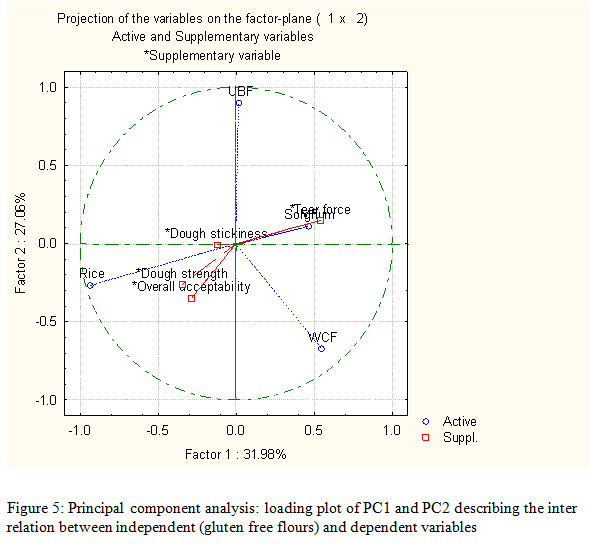 Optimization and Characterization of Gluten-Free ...